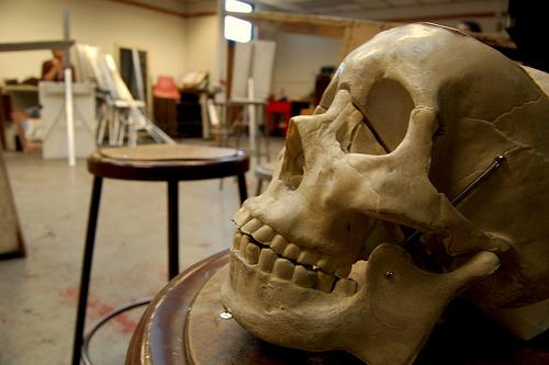 skullclassroom